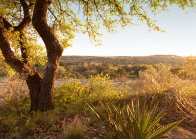 Horizontal landscape. Sunset in Texas hill country. USA
